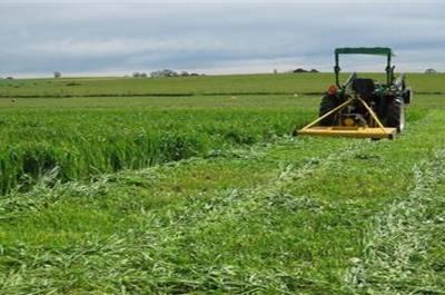Νέα υπηρεσία ετήσιας αγροτικής συμβουλευτικής για την καλύτερη εξυπηρέτησή σας
